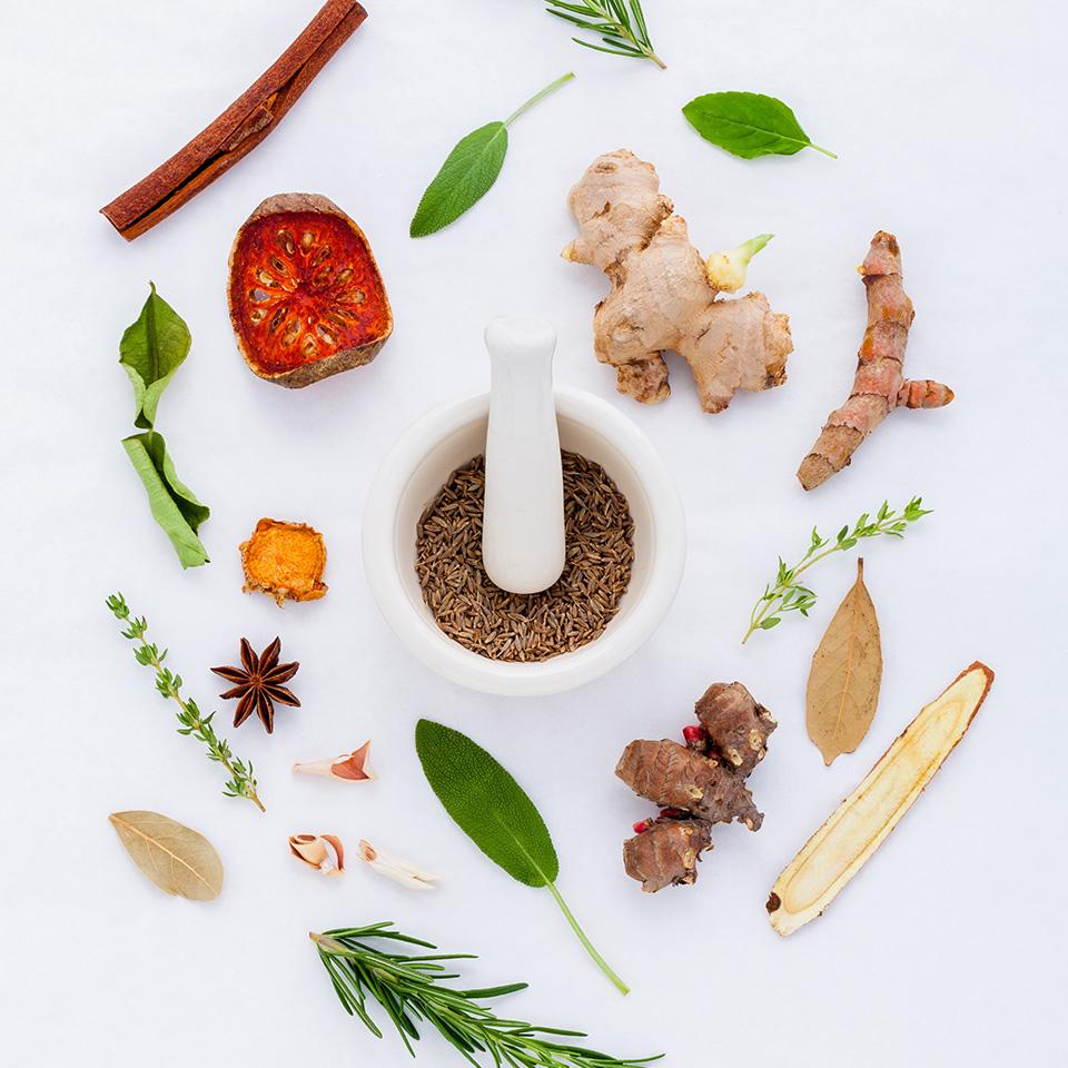 SANHO - Sanación Holística - Coaching en Nutrición Consciente - Terapias alternativas - Eventos especiales - Productos saludables - Talleres de cocina - Limpieza Hepática